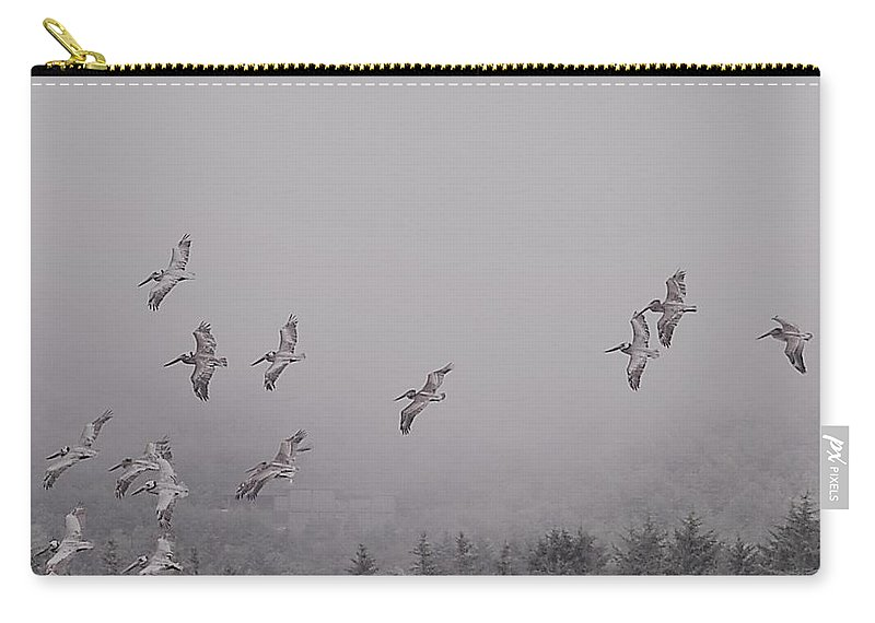 Pelican Carry-all Pouch featuring the photograph Oregon Coast Pelicans Black And White by Tim Hoffelmeyer