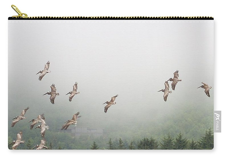 Pelican Carry-all Pouch featuring the photograph Oregon Coast Pelicans by Tim Hoffelmeyer
