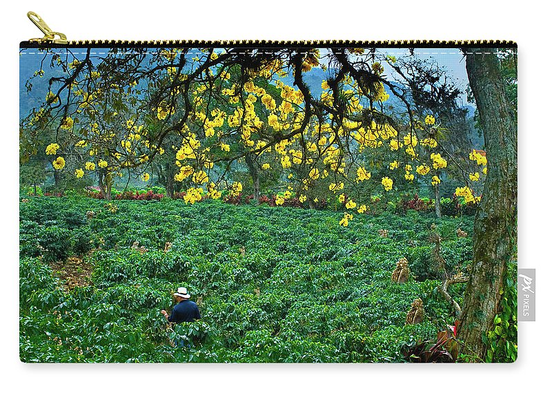 Expertise Carry-all Pouch featuring the photograph Orosi Valley by John Coletti