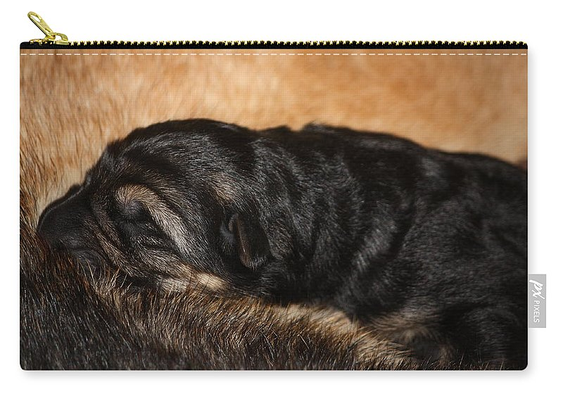 German Shepherd Carry-all Pouch featuring the photograph Our Singleton by Cheryl Orduno