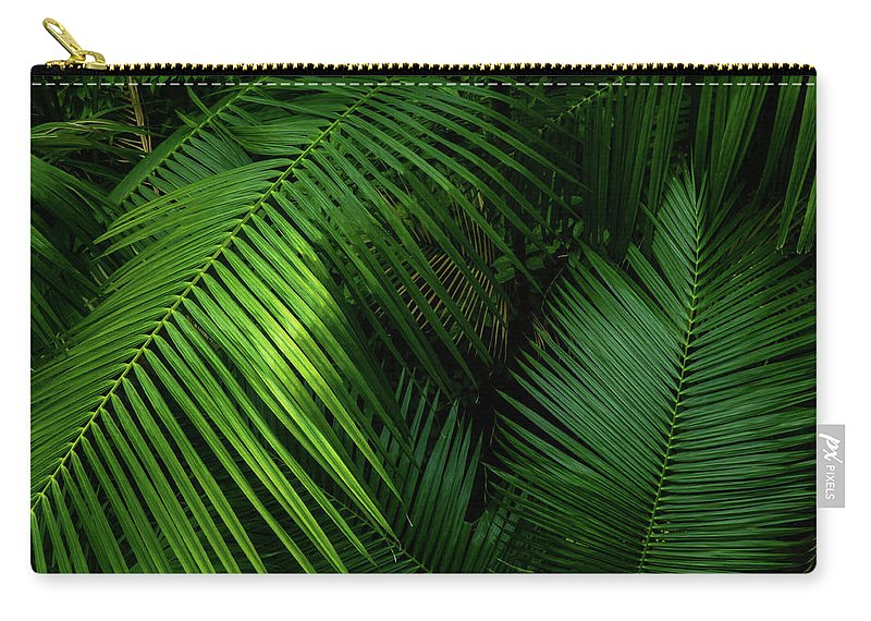 Palm; Minimalism; Minimalist; Brown; Green; Yellow; Asia; Singapore; Leaves Carry-all Pouch featuring the photograph Palm Saturday by Steve Taylor
