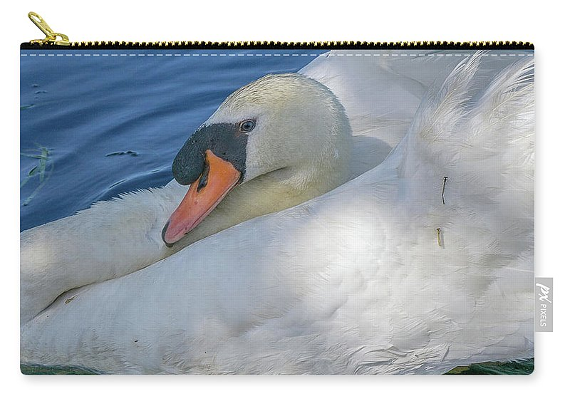 Swan Carry-all Pouch featuring the photograph Papa's Got Blue Eyes by Linda Howes