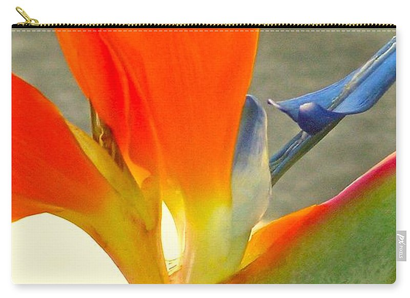 Paradise Carry-all Pouch featuring the photograph Paradise by James Temple