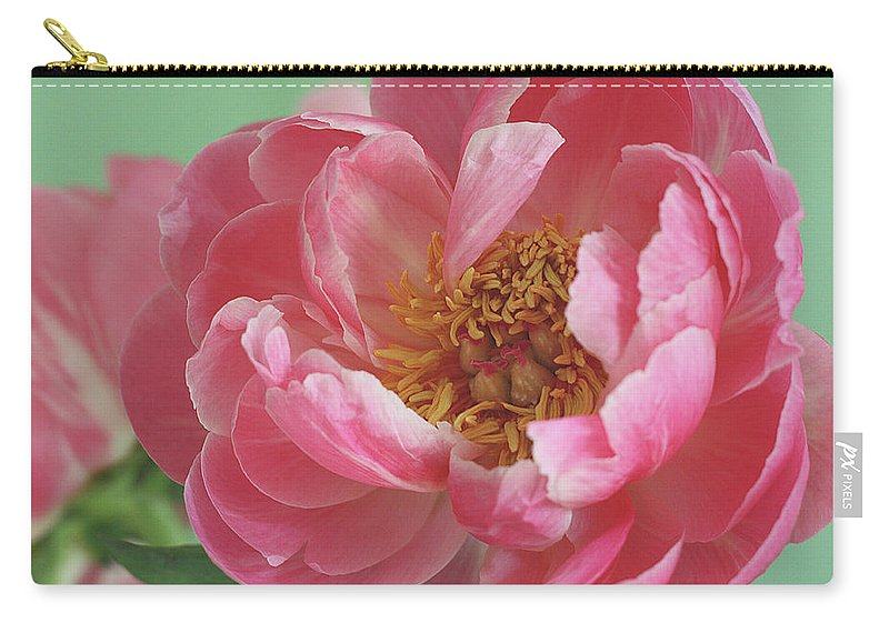 California Carry-all Pouch featuring the photograph Peony by © 2011 Staci Kennelly