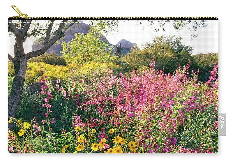 Scenics Carry-all Pouch featuring the photograph Phoenix Botanical Gardens by Richard Felber