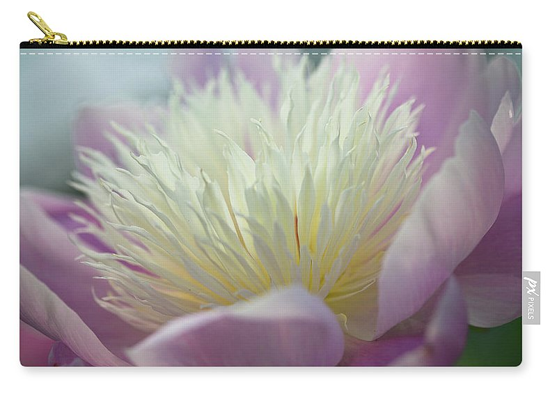 Toronto Carry-all Pouch featuring the photograph Pink And White Peony by Lynda Murtha