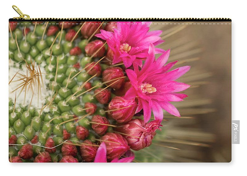 Bud Carry-all Pouch featuring the photograph Pink Cactus Flower In Full Bloom by Zepperwing