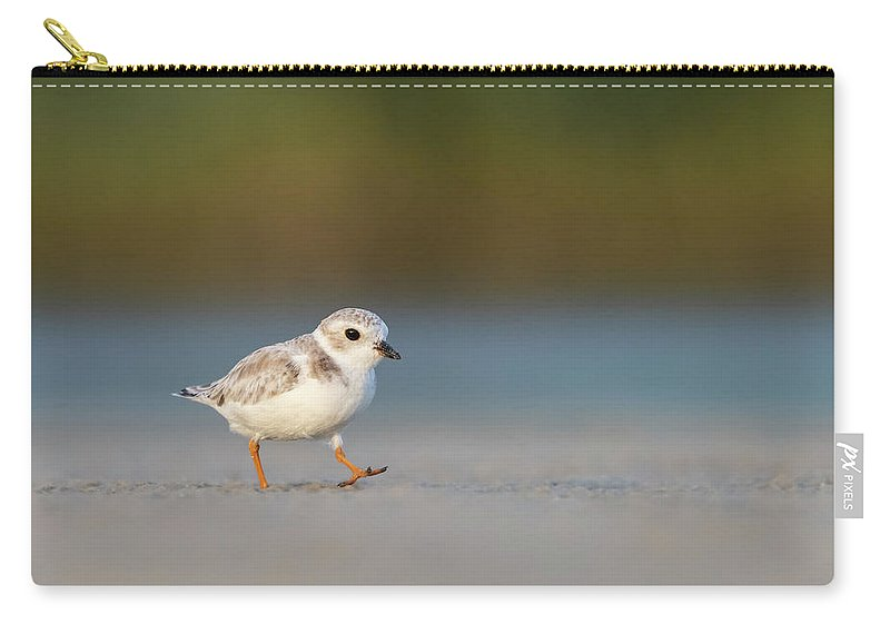 Beach Carry-all Pouch featuring the photograph Piping Plover by Peter Brannon