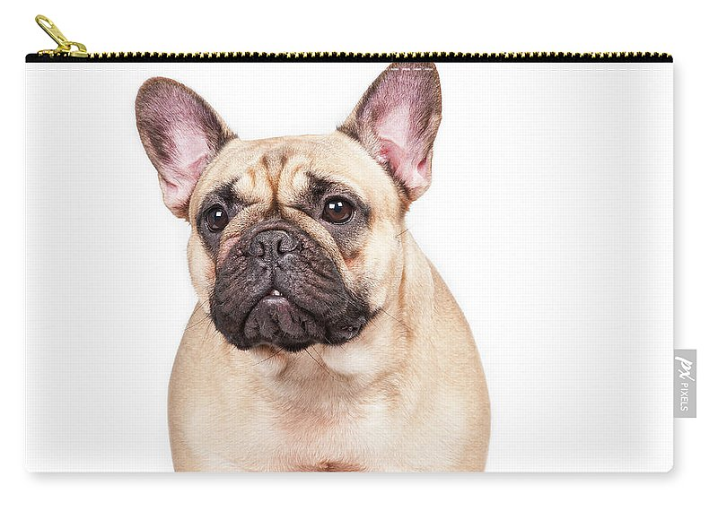 Pets Carry-all Pouch featuring the photograph Portrait Of A French Bulldog by @hans Surfer