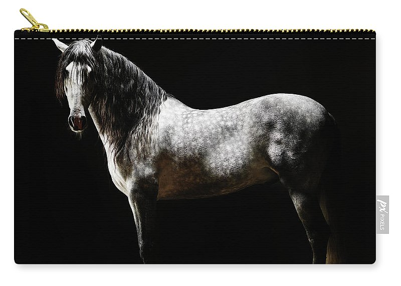 Horse Carry-all Pouch featuring the photograph Portrait Of Standing Grey Horse by Henrik Sorensen