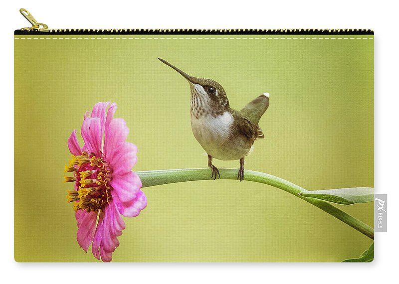 Hummingbird Carry-all Pouch featuring the photograph Pretty On Pink by Rhonda Lane