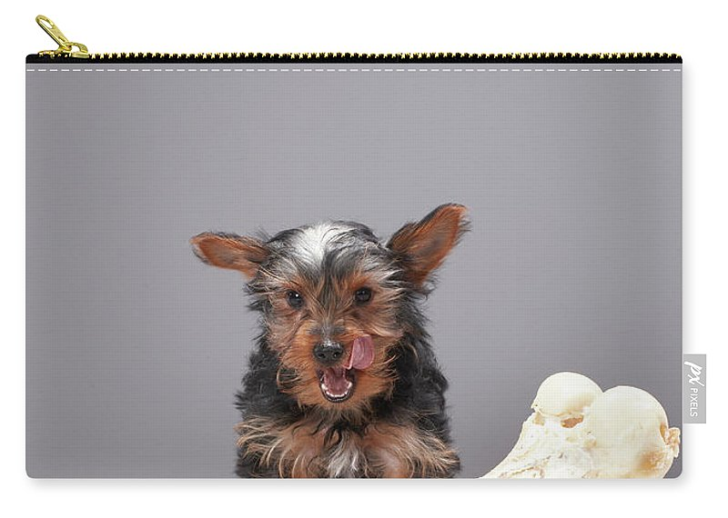Pets Carry-all Pouch featuring the photograph Puppy With Oversized Bone by Martin Poole