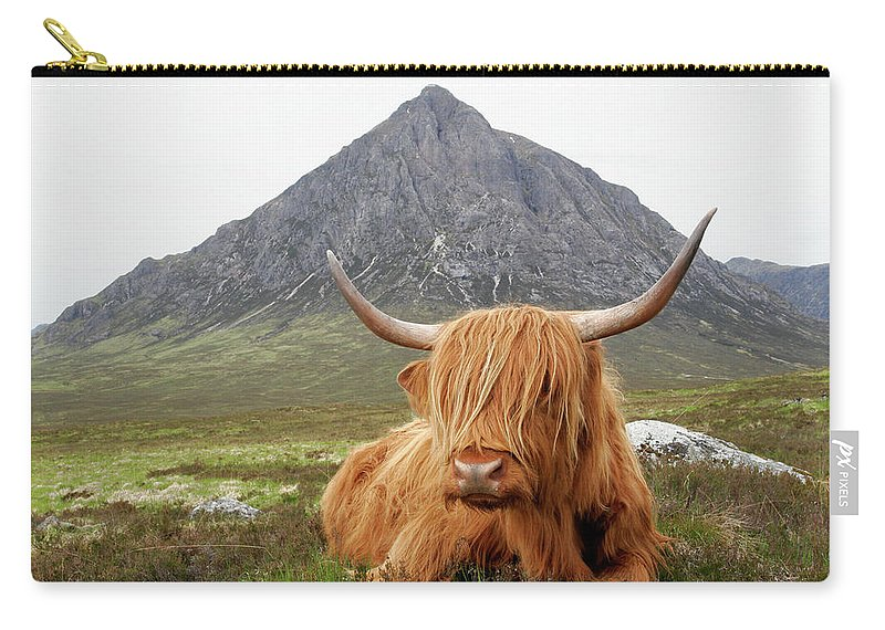 Horned Carry-all Pouch featuring the photograph Quintessential Scotland by Thedman