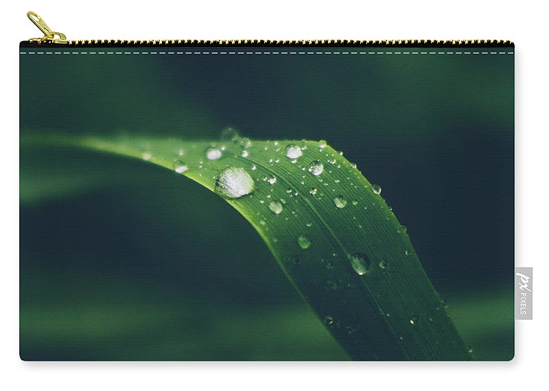 Rain Carry-all Pouch featuring the photograph Raindrops by Luis Gonzalez