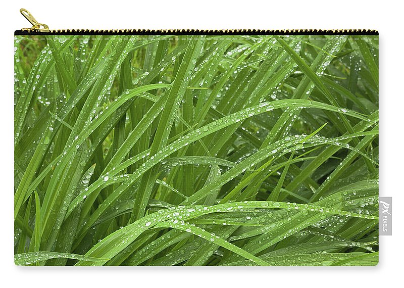 Tranquility Carry-all Pouch featuring the photograph Raindrops Of Daylily Foliage by Adam Jones