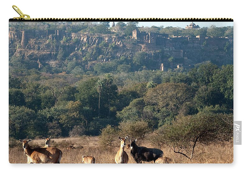 Ranthambore National Park Carry-all Pouch featuring the photograph Ranthambore Fort by Chaithanya Krishna Photography