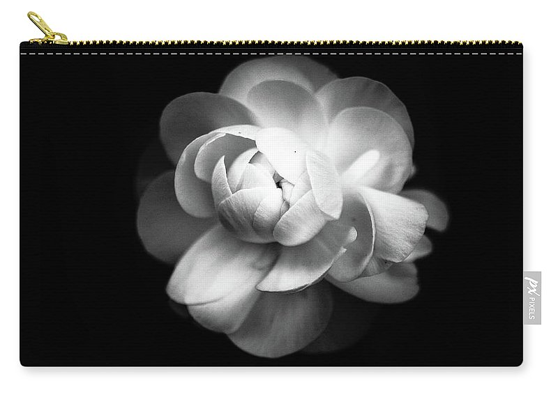 Black Background Carry-all Pouch featuring the photograph Ranunculus Flower by Annfrau