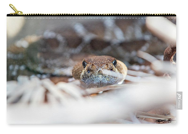 Rattle Snake Carry-all Pouch featuring the photograph Rattle Snake by Mark Stastny