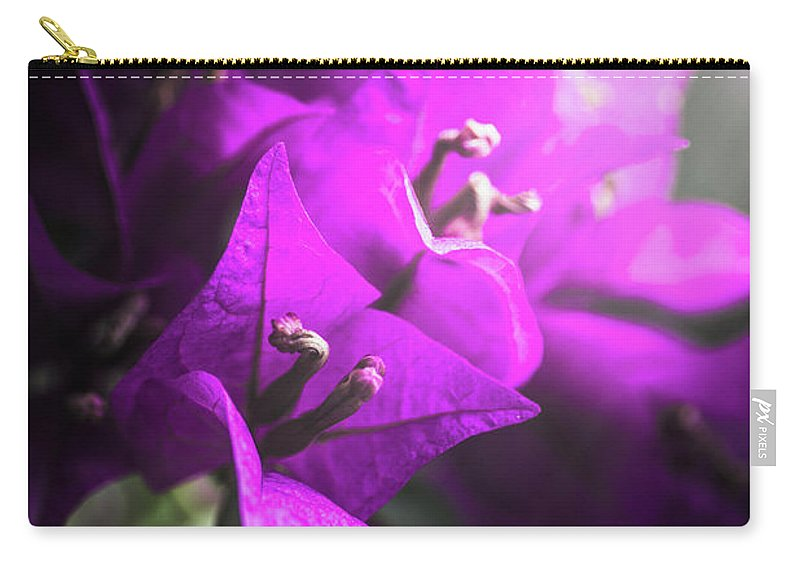 Flower Carry-all Pouch featuring the photograph Rays Of Bougainvillea by Jorgo Photography - Wall Art Gallery
