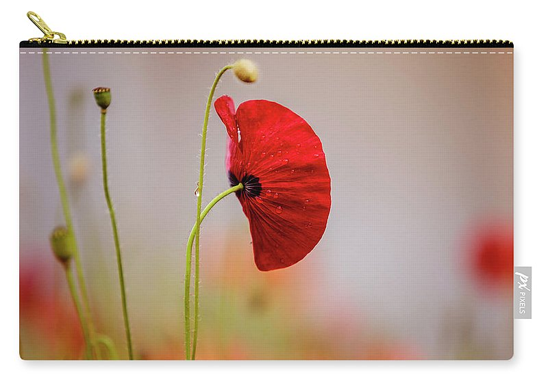 Poppy Carry-all Pouch featuring the photograph Red Corn Poppy Flowers by Nailia Schwarz