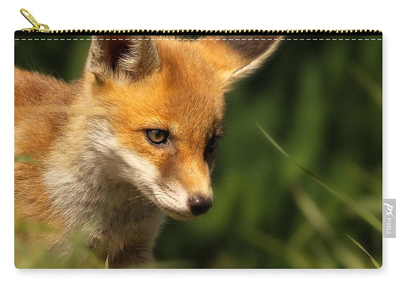 Alertness Carry-all Pouch featuring the photograph Red Fox Cub In The Grass by Chris Jolley