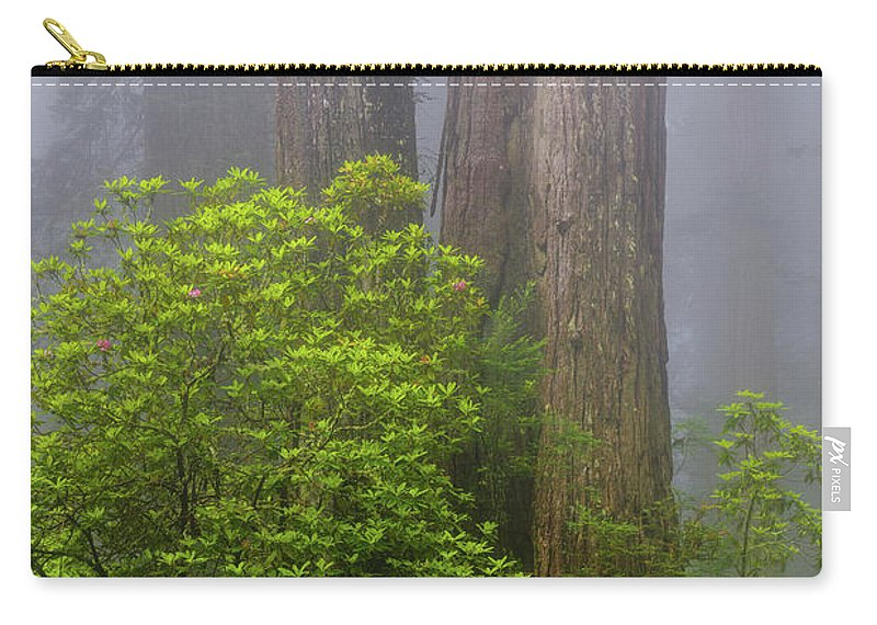 Redwood Trees Carry-all Pouch featuring the photograph Redwoods By Crescent City 7 by Mike Penney