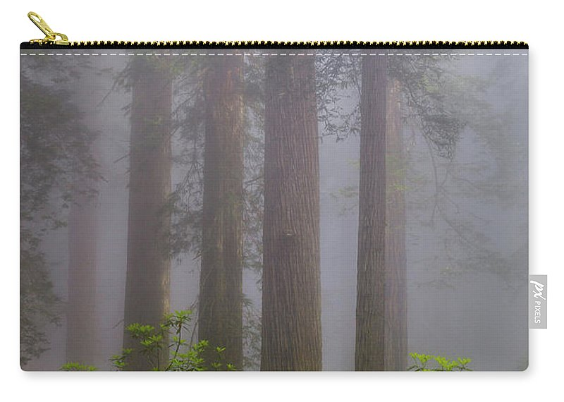 Redwoods Carry-all Pouch featuring the photograph Redwoods By Crescent City 8 by Mike Penney