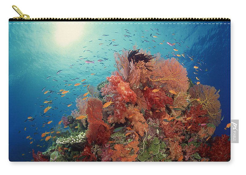 Underwater Carry-all Pouch featuring the photograph Reef Scenic Of Hard Corals , Soft by Comstock