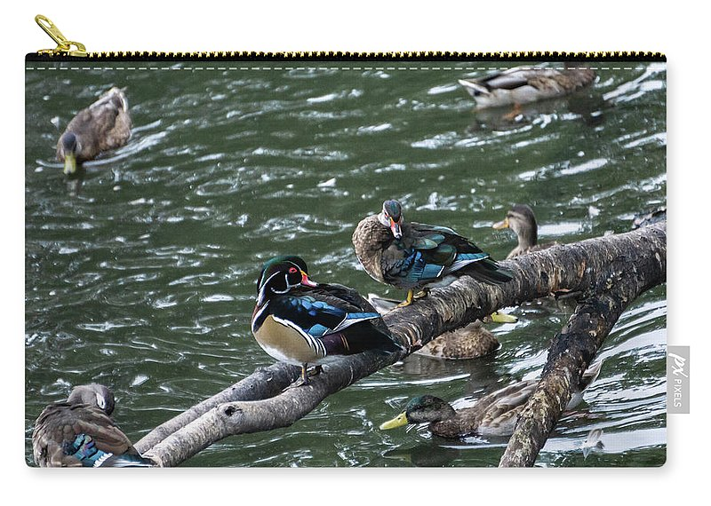 Duck Carry-all Pouch featuring the photograph Resting Ducks by Rob Olivo