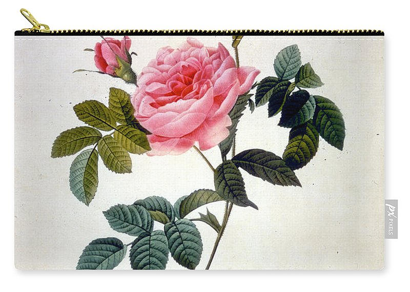 19th Century Carry-all Pouch featuring the mixed media Rosa Inermis by Pierre-Joseph Redoute