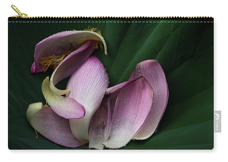 Petal Carry-all Pouch featuring the photograph Scattered Lotus Petals by Masahiro Makino