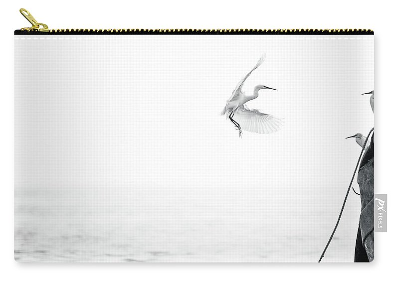 Animal Themes Carry-all Pouch featuring the photograph Sea Birds Of Shekou Shenzhen by Capturing A Second In Life, Copyright Leonardo Correa Luna