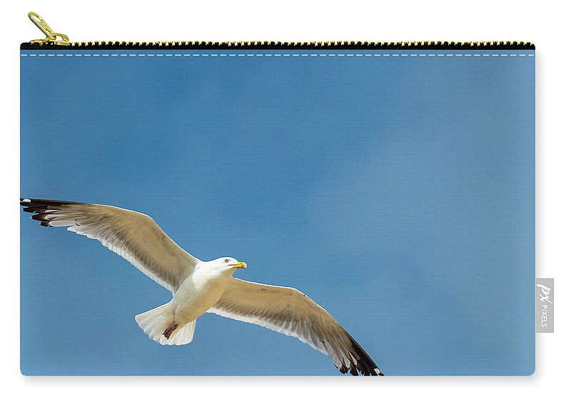 Carry-all Pouch featuring the photograph Sea Gull by Thomas Wasilewski