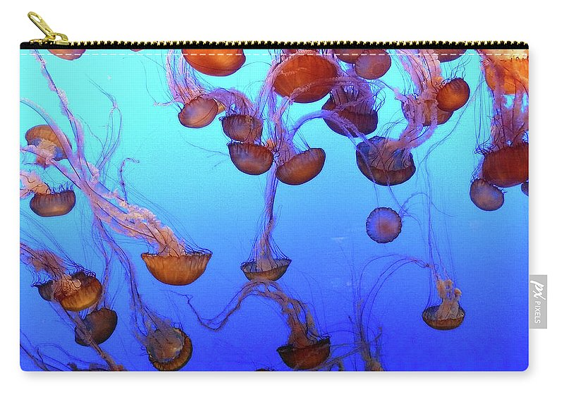 Landscape Carry-all Pouch featuring the photograph Sea Nettle Jellies by Clair Flatt