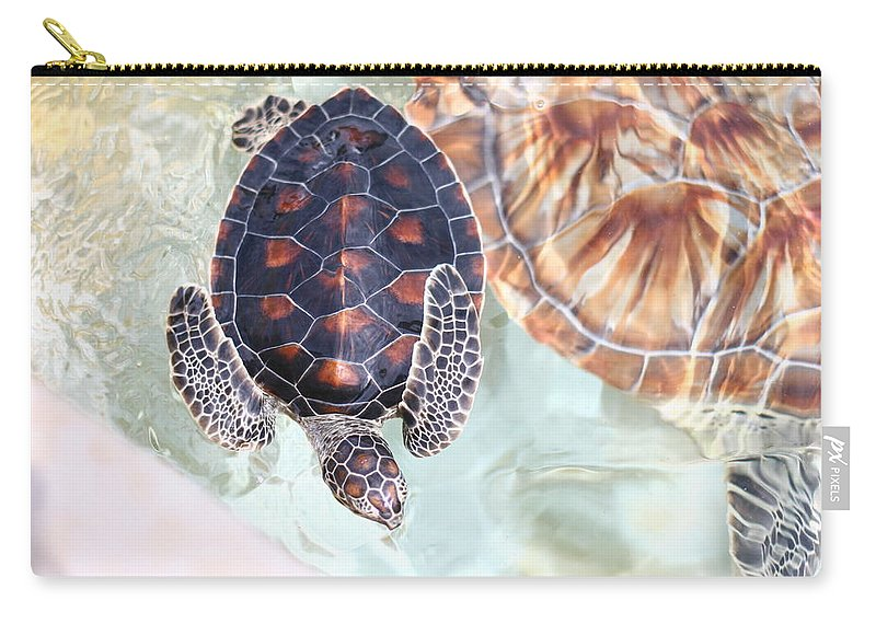 Underwater Carry-all Pouch featuring the photograph Sea Turtle by Alyssa B. Young
