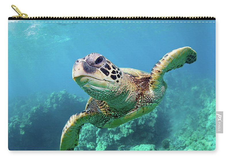 Underwater Carry-all Pouch featuring the photograph Sea Turtle, Hawaii by M Swiet Productions