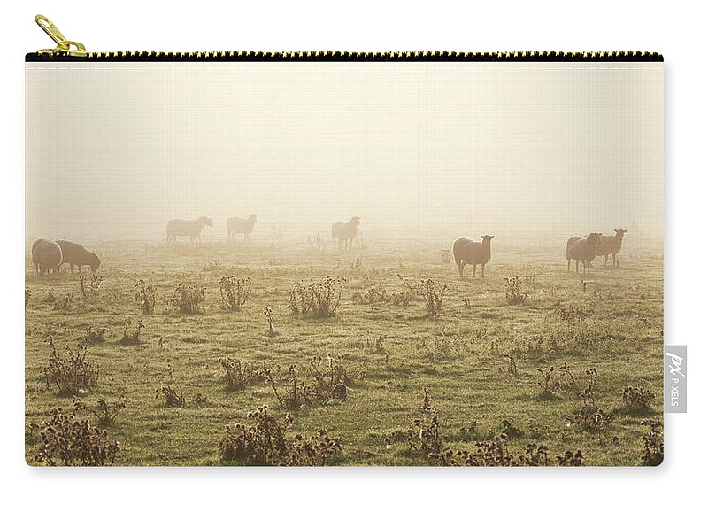 Dawn Carry-all Pouch featuring the photograph Sheep Viewed On A Misty Morning by Travelpix Ltd