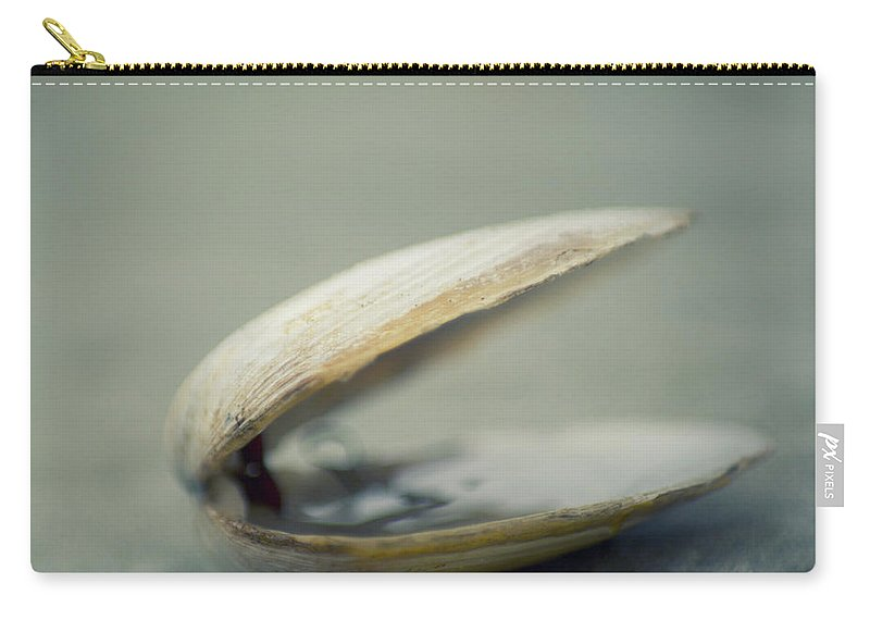 Animal Shell Carry-all Pouch featuring the photograph Shell by Jill Ferry Photography
