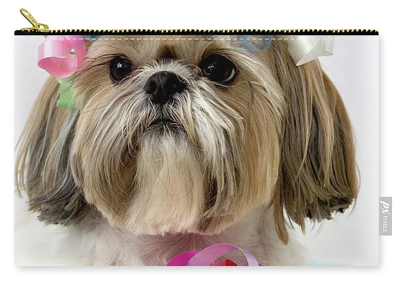Pets Carry-all Pouch featuring the photograph Shih Tzu Dog by Geri Lavrov