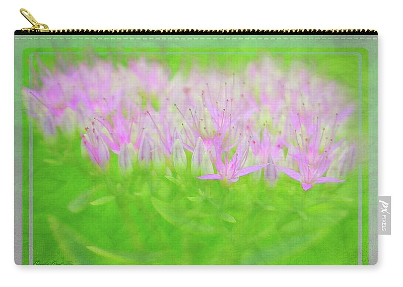 Costello Carry-all Pouch featuring the photograph Showy Stonecrop Framed by Maria Costello