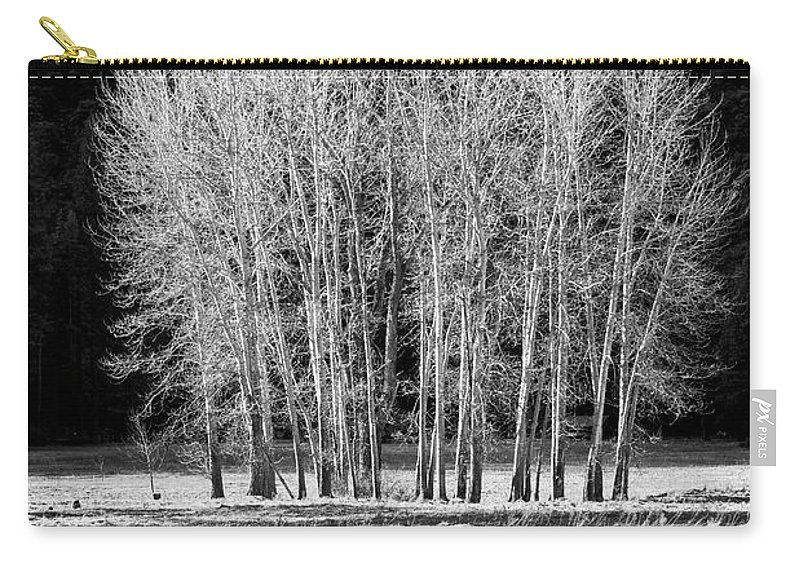 Silver Trees Carry-all Pouch featuring the photograph Silver Trees, Yosemite National Park by Yefim Bam