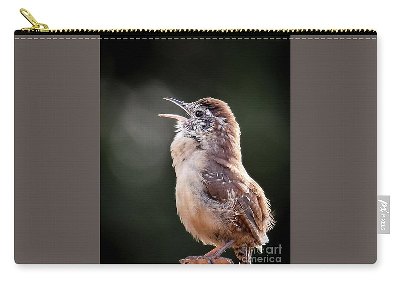 House Wren Carry-all Pouch featuring the photograph Singing Wren by Amy Porter