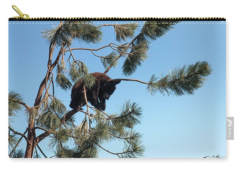 Sleeping Bear Carry-all Pouch featuring the photograph Sleeping Bear Cub by Mark Stastny