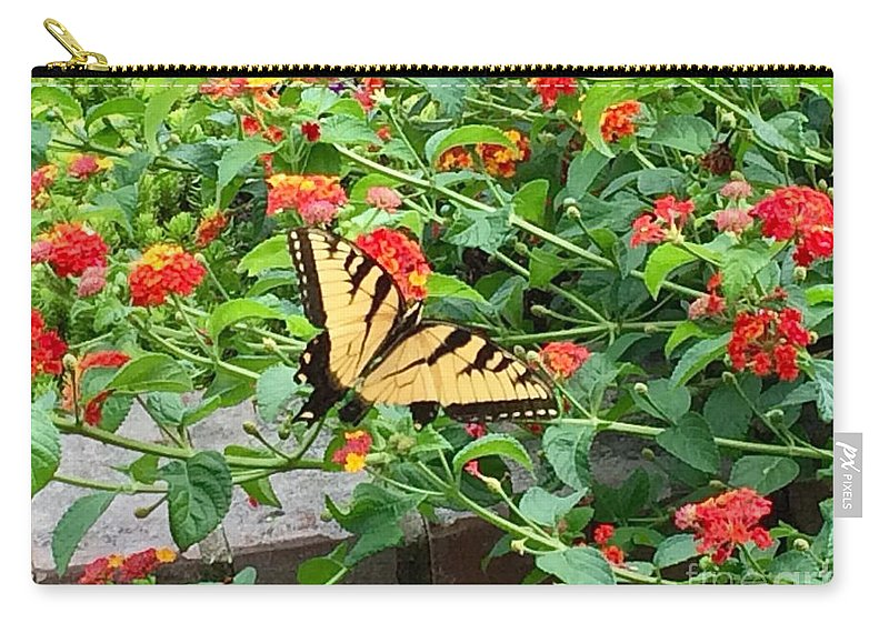 Butterfly Carry-all Pouch featuring the photograph Snacking by Laurel Adams