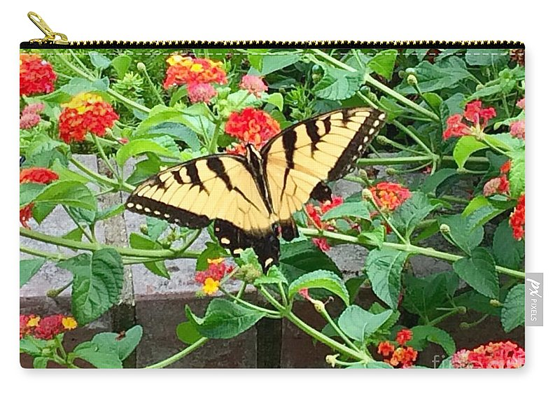 Butterfly Carry-all Pouch featuring the photograph Snacking Two by Laurel Adams