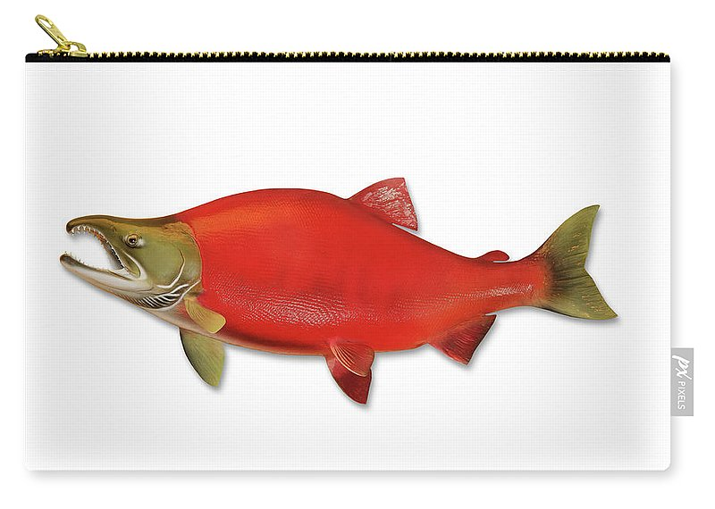 Orange Color Carry-all Pouch featuring the photograph Sockeye Salmon With Clipping Path by Georgepeters