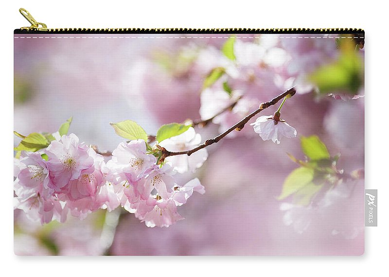 People Carry-all Pouch featuring the photograph Spring by Goldhafen