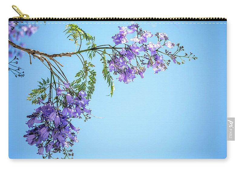 Jacaranda Tree Carry-all Pouch featuring the photograph Springtime Beauty by Az Jackson
