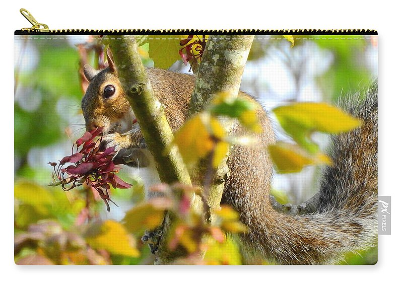 Squirrel Carry-all Pouch featuring the photograph Squirrel Snack by Charlotte Schafer