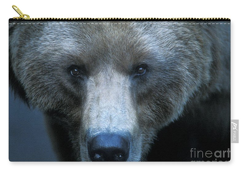 Animals Carry-all Pouch featuring the photograph Stare Down by Sandra Bronstein